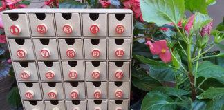 Il Calendario dell'Avvento con le fiabe di Basile, raccontate da Francesca Del Vecchio in diretta Instagram ogni sera alle 19